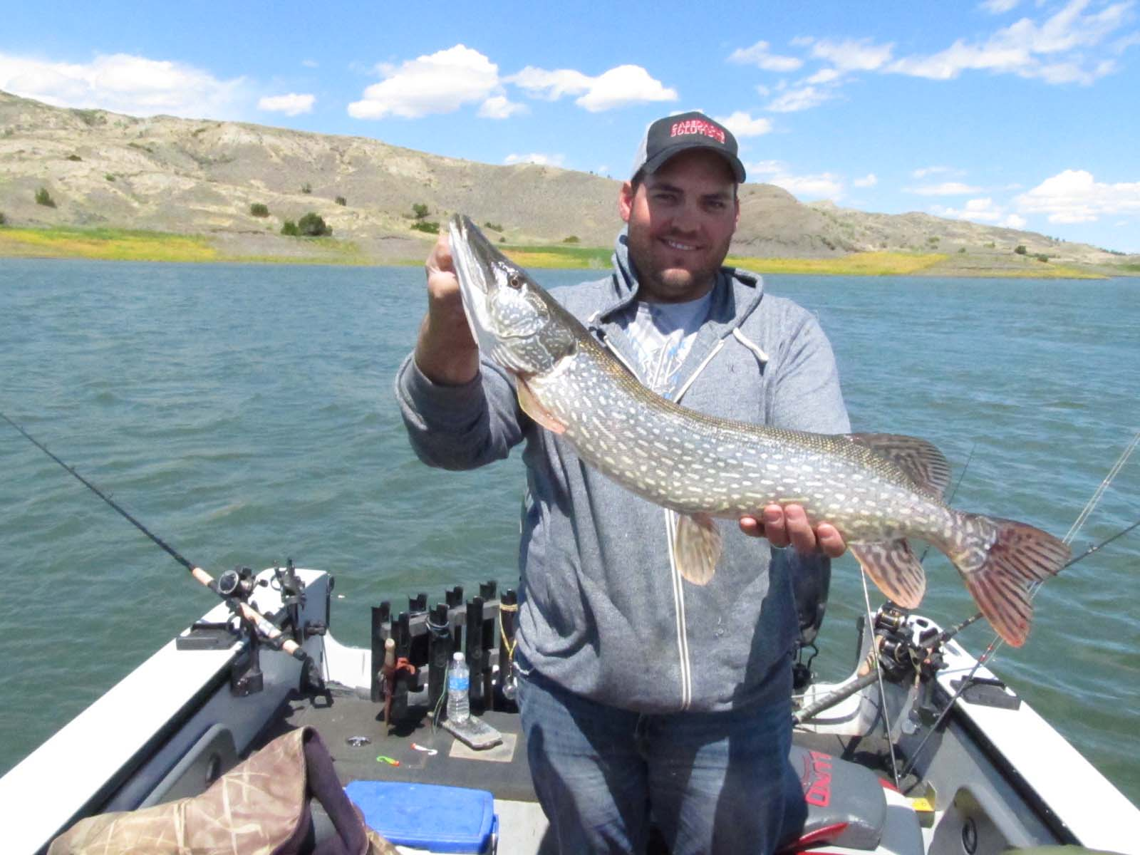Fork peck guide fishing in 2012 photo 104 fort peck for Fort peck fishing report